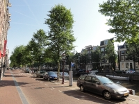 Ulmus New Horizon (amsterdam herengracht 358-394) 130707l