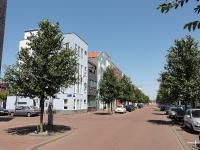 Ulmus New Horizon (amsterdam vaillantlaan) 110715f