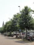 Ulmus New Horizon (amsterdam westerdok) 140609f