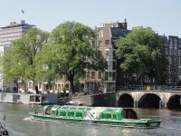 Ulmus hollandica Belgica (amsterdam amstel prinsengracht) 130707