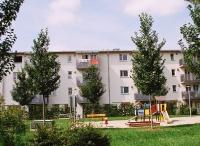 Ulmus Rebona (ingolstadt) 2007 juli