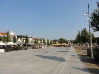Ulmus Rebona (purmerend koemarkt) 140904